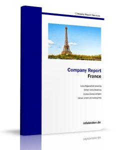 France Company Report
